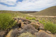Tankwa Karoo National Park, South Africa www.sanparks.org Windmills, Nature Reserve, Botanical Gardens, Conservation, Wilderness, State Parks, South Africa, National Parks, Landscapes