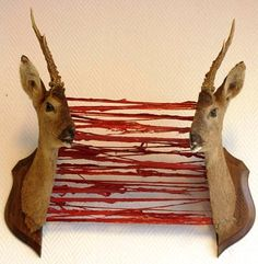 Now I want a deer head, just for Halloween! Halloween Trophies, Fete Halloween, Halloween Horror, Halloween Crafts, Halloween Decorations, Halloween Stuff, Bizarre, Faux Taxidermy, Macabre