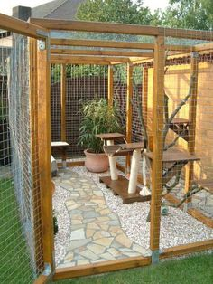 Small cat garden paradise You are in the right place about Dog patio ideas porches Here we offer you Cat Fence, Outdoor Cat Enclosure, Diy Cat Tree, Cat Cages, Cat Run, Cat Playground, Animal Room, Cat Garden, Cat Condo