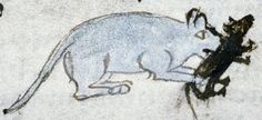 Bodleian Library, MS. Douce 88, Folio 95r