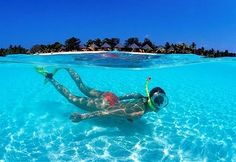 #Diving #Kuredu_Island_Resort #Maldives http://en.directrooms.com/hotels/info/1-14-47-1297/