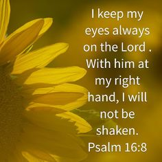 ✿psalm the し✿rd † nurses them when they are sick, & restores them to health. Healing Scriptures, Prayers For Healing, Prayer Scriptures, Prayer Quotes, Healing Heart, Biblical Quotes, Bible Verses Quotes, Spiritual Quotes, Healing Quotes