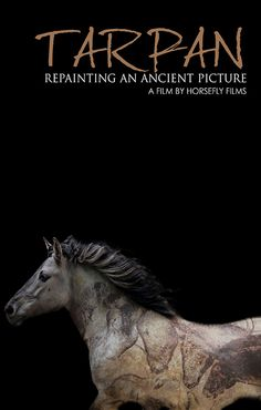 This is the story of mankind's attempt to bring back a horse from the dead. Tarpan had roamed in wild herds across Europe for millennia, running through the dreams of our ancient ancestors and onto prehistoric cave walls.  Watch it now on HorseLifestyle.TV