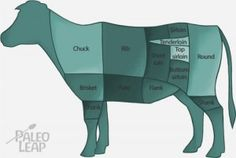 The importance of grass fed beef