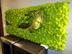Moss Wall Art, Moss Art, Vertikal Garden, Moss Graffiti, Moss Decor, Succulent Wall Art, Diy Wall Painting, Room With Plants, Dish Garden