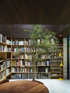 Contemporary home library: Raven Street House / James Russell Architect Home Library Design, House Design, Interior Architecture, Interior And Exterior, Installation Architecture, Building Architecture, Style Loft, Street House, Home Libraries