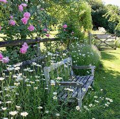 Les 119 meilleures images de Jardin romantique en 2020   Jardin ...