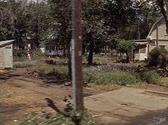 From Movie -- Neighborhood