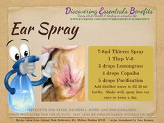 Young Living Essential Oils: Animal Dog Pet Ear Spray Animal Desk Reference