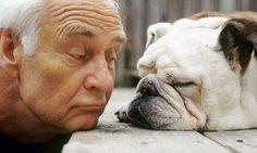 I  nostri cani e gatti comunicano in continuazione con noi, ma noi siamo capaci di capirli?