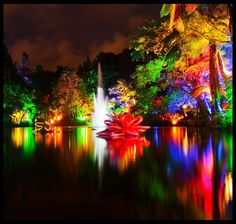 TSB bank Festival of Lights at Pukekura Park