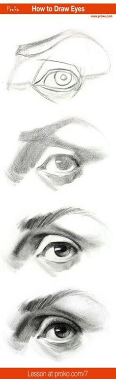 to Draw an Eye – Step by Step Draw realistic eyes with this step-by-step instruction. Full drawing lesson at realistic eyes with this step-by-step instruction. Full drawing lesson at Pencil Portrait Drawing, Pencil Drawings, Painting & Drawing, Art Drawings, Drawing Portraits, Horse Drawings, Pencil Art, How To Draw Portraits, Pencil Sketching