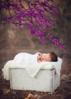 Newborn photography--Emilynn {a newborn session} from LJHolloway Photography Baby Poses, Newborn Poses, Newborn Shoot, Newborns, Sibling Poses, Outdoor Newborn Photography, Children Photography, Family Photography, Photography Ideas