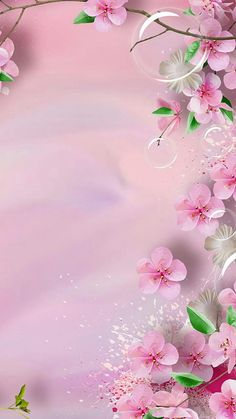 Wallpaper Floral Phone Backgrounds Ideas For 2019 Flower Background Wallpaper, Flower Backgrounds, Pink Wallpaper, Nature Wallpaper, Screen Wallpaper, Wallpaper Backgrounds, Iphone Backgrounds, Background Flores, Iphone Wallpapers