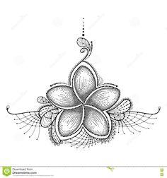 Image result for botanical drawing of frangipani