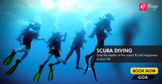 Dive deep into the world of water as you take up Your experience would be nothing less than exhilarating as you take up one of the most sport there is. New Year Special, Book Of Life, Goa, Scuba Diving, Journey, Ocean, Deep, Memories, Explore