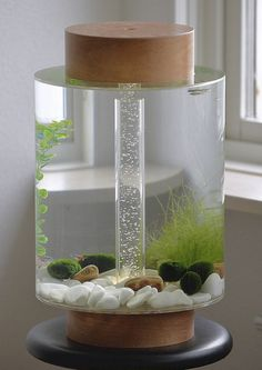 'Norom'- A Minimalist Cylindrical-Shaped Aquarium by Charles Törnros http://designwrld.com/norom-minimalist-cylindrical-shaped-aquarium-charles-tornros/
