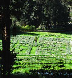 5 labirinti in Toscana