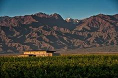 Mendoza in Summer. Argentina