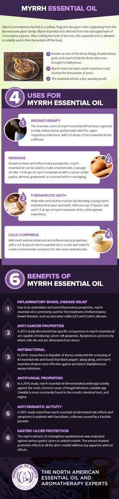 Myrrh Essential Oil Uses & Benefits