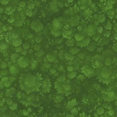 GrassTbasic-300x300.jpg (300×300)