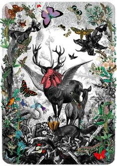 beautiful print by Kristjana S Williams #symmetry #forest