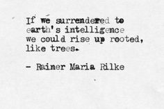 """If we surrendered to earth's intelligence we could rise up, rooted like trees"" ~Ranier Maria Rilke"