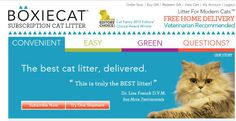 Boxiecat teams up with Animal Angels Rescue to benefit animals in need
