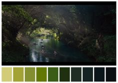 Jurassic World dir. Movie Color Palette, Colour Pallette, Cinema Colours, Color In Film, Film Tips, Weekend Film, Color Script, Design Palette, Film Grab