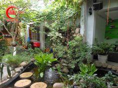 Tiểu Cảnh Quán Cafe Sân Vườn Đẹp 1
