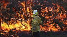 Teenagers charged as Australia's bushfires continue Sky News Bushfires In Australia, Wildland Fire, Save Our Earth, Australia Animals, Australian Bush, Lightning Strikes, Wild Nature, Yesterday And Today, Environmental Art