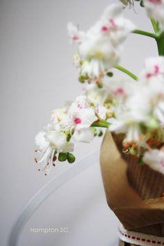 "Flor castaño de indias: ""Lujo"""