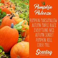 pumpkin lovers Scentsy scent suggestions 2016