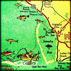 Map Of The Panhandle Of Florida.266 Best Travel Panhandle Port St Joe Mexico Beach And