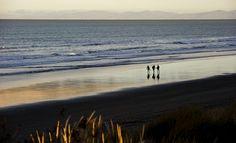 Spend the summer on a beach. -- Waikuku Beach - New Zealand