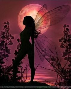 Magical Fairies ~ Fantasy & Fairy Silhouettes by Julie Fain