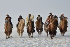 People ride camels during the winter Nadam Fair, a traditional Mongolian fun gathering, on...