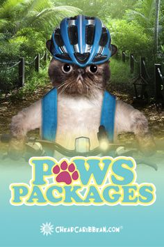 Our #PawsPackages include excursions! There's something to fit every pet interest. See all excursions!