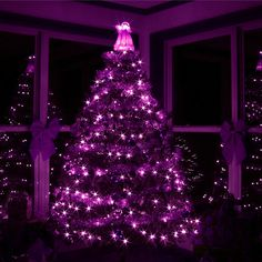 Purple Christmas Decoration ideas, which is Edgy- Chic and One of a kind. Check out the best Purple Christmas decor, Christmas ornaments, wreath ideas here. Beautiful Christmas Trees, Christmas Love, All Things Christmas, Christmas Lights, Christmas Holidays, Merry Christmas, Christmas Scenery, Royal Christmas, Christmas Windows