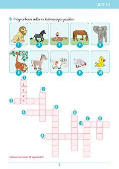 2. Sınıf Konu Anlatım İngilizce Bilgi Kutusu