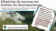 """Não deu no Jornal Nacional: Para os que têm complexo de """"vira-latas"""" ambiental..."""
