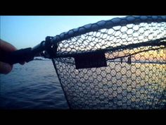Fliegenfischen II