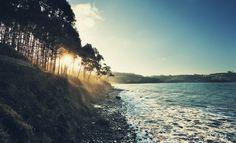 """500px / Photo """"Playa Vs monte"""" by Juan Boado"""
