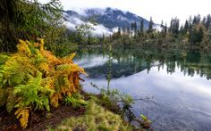 Landscape 4K Ultra HD Wallpaper    ... forest landscape fog lake ultrahd 4k wallpaper wallpaper background