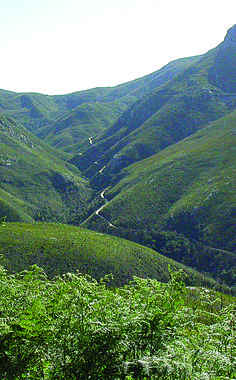 Montagu Pass, George