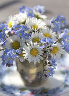 love these little blue flowers with the daisies - wondering what they are?