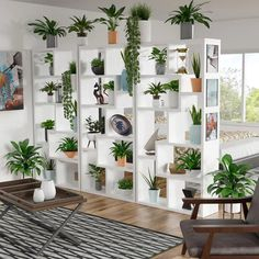 10 Simple Steps to Creating Your Own Meditation Corner At Home – The Daily Crisp Room With Plants, House Plants Decor, Plant Decor, Plant Rooms, Indoor Garden, Indoor Plants, Indoor Plant Shelves, Meditation Corner, Decoration Plante