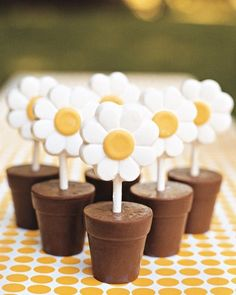 Blooming Bites - Treats match the party's daisy theme. White-chocolate daisies sprouting from chocolate flowerpots are displayed on polka-dot paper.