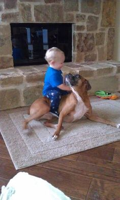 Boxer love...This picture just sums up the Boxer as a breed so well. And why it's all we'll ever own here.