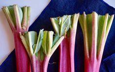 Rhubarb 3 Ways (Beyond Pie)